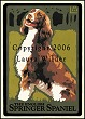 English Springer Spaniel Print LWDPESP