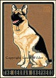 German Shepherd Print LWDPGS